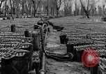 Image of United States soldiers Italy, 1943, second 20 stock footage video 65675076939