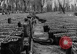 Image of United States soldiers Italy, 1943, second 21 stock footage video 65675076939