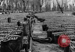 Image of United States soldiers Italy, 1943, second 22 stock footage video 65675076939