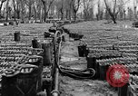Image of United States soldiers Italy, 1943, second 23 stock footage video 65675076939
