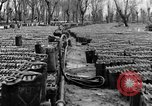 Image of United States soldiers Italy, 1943, second 25 stock footage video 65675076939