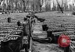 Image of United States soldiers Italy, 1943, second 27 stock footage video 65675076939