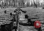 Image of United States soldiers Italy, 1943, second 28 stock footage video 65675076939
