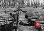 Image of United States soldiers Italy, 1943, second 29 stock footage video 65675076939