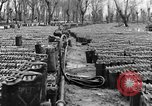 Image of United States soldiers Italy, 1943, second 30 stock footage video 65675076939