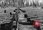 Image of United States soldiers Italy, 1943, second 32 stock footage video 65675076939